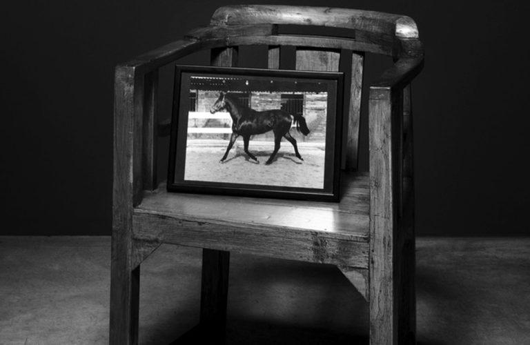 smith cavallo di catellani&smith lampadari
